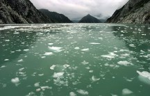 Зеленая северо-западная лагуна и льдины.
