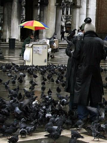 Продавец попкорна в окружении голубей. Площадь San Marco.
