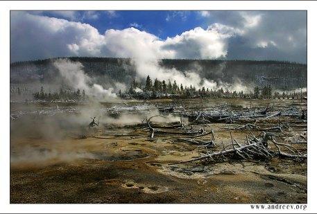 """""""Поле боя"""". Пар от гейзеров смешивается с облаками, деревья лежат словно поверженные солдаты, почва раскрашена бактериями в яркие, нереальные цвета – все это особенности национального парка """"Yellowstone""""."""