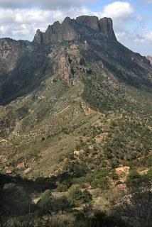 Сосновый каньон и Casa Grande. Тропа Lost mine trail.