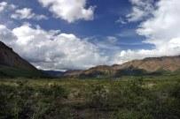 Тундра и Alaska range.