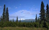 Вид на Мак-Кинли с дороги George Parks highway.
