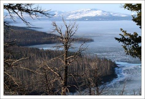 Озеро Йеллоустоун с высоты смотровой площадки Lake Butte overlook.