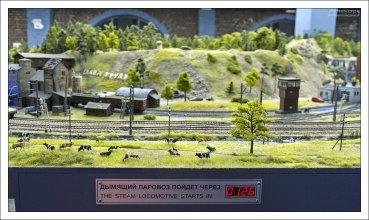 Общее количество единиц подвижного состава — более 2700, из них 250 локомотивов.