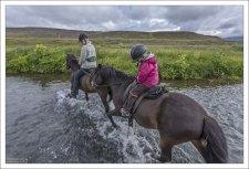 Благодаря хорошо развитому равновесию, исландские лошади легко преодолевают такие препятствия, как льды, острые камни или быстрые реки.