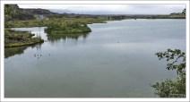 На озере Миватн расположено более 50 островов.