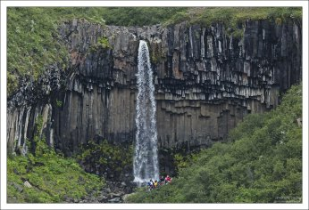 Svartifoss в переводе означает Чёрный водопад.