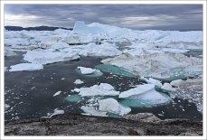 Огромные льдины толкутся у самого берега.