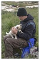 Самый смелый щенок залез на руки.