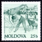 trinta lupta moldoveneasca