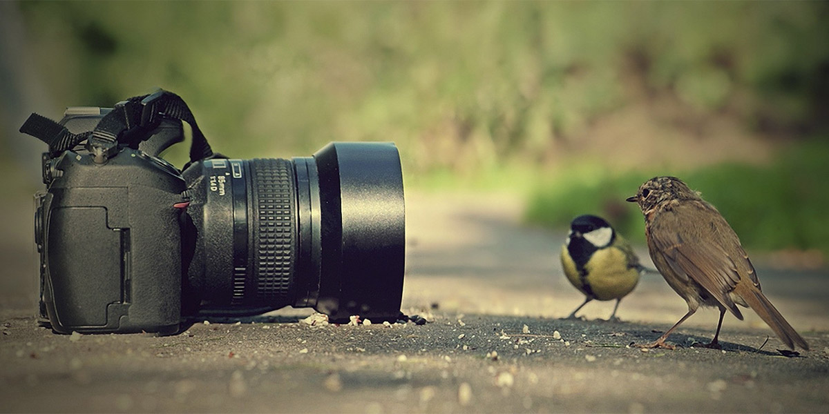 Fotograful cauta omul