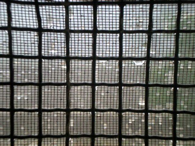 E' arrivata la pioggia!