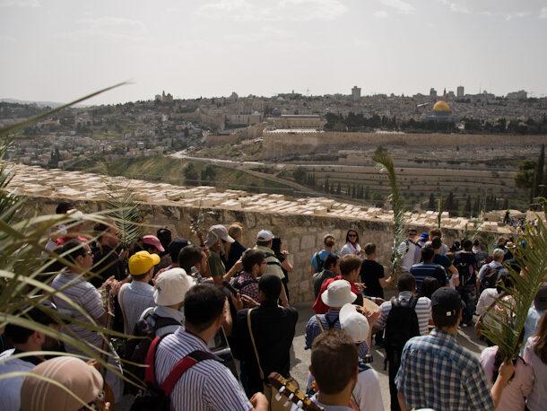 La festa delle Palme da Betfage a Sant'Anna