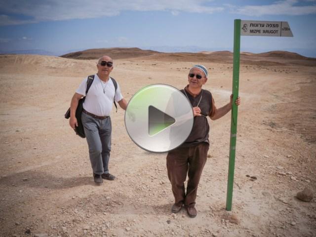 Sulle cime dei monti di Ein Gedi