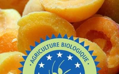 Comment votre producteur de confiture bio artisanale fait-il vivre sa démarche RSE avec une charte éthique d'achats  ?