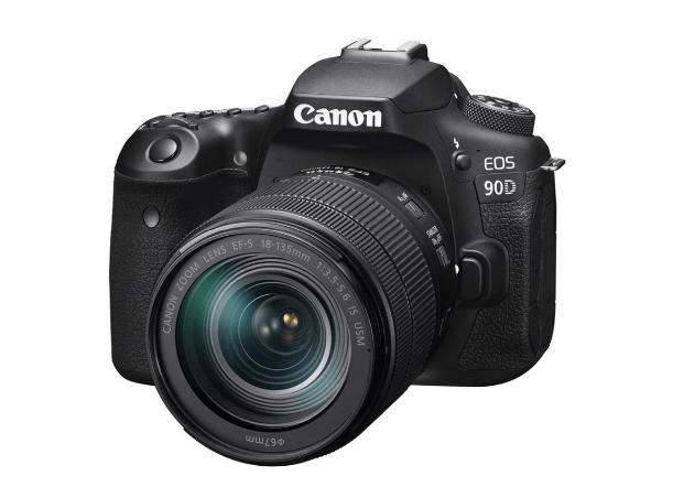 Canon EOS 90 - First Impressions for Wildlife & Action photography