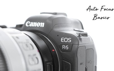 My Expert Review Canon R6 Auto Focus
