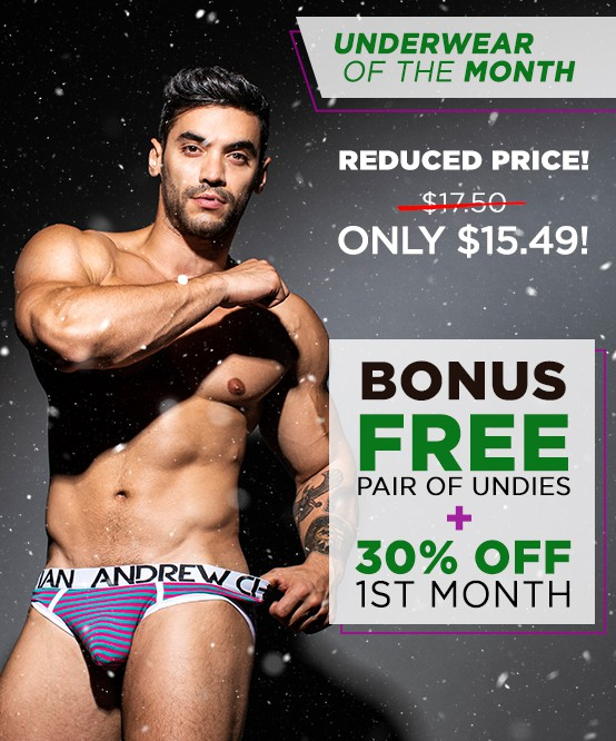 Underwear Of The Month Club Subscription Image 2