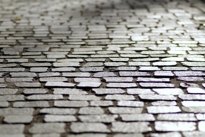 gray stone pathway