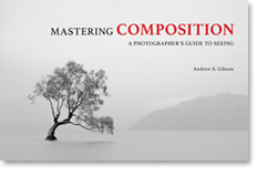 Mastering Composition photography ebook by Andrew S. Gibson