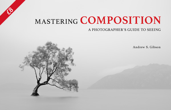 Mastering Composition ebook by Andrew S. Gibson