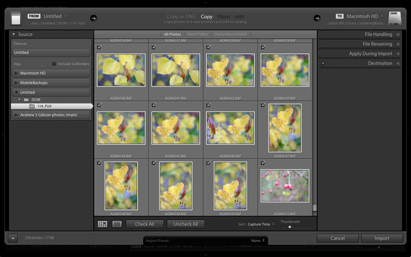 Old Lightroom Import window