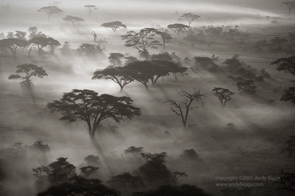 Black and white fine art landscape photo in Africa by Andy Biggs