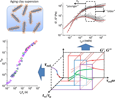 Universal gelation dynamics of PEG-adsorbed clay