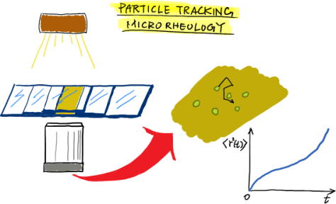 Particle tracking microrheology