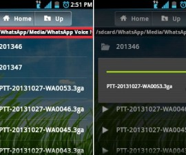 Delete WhatsApp Voice Messages