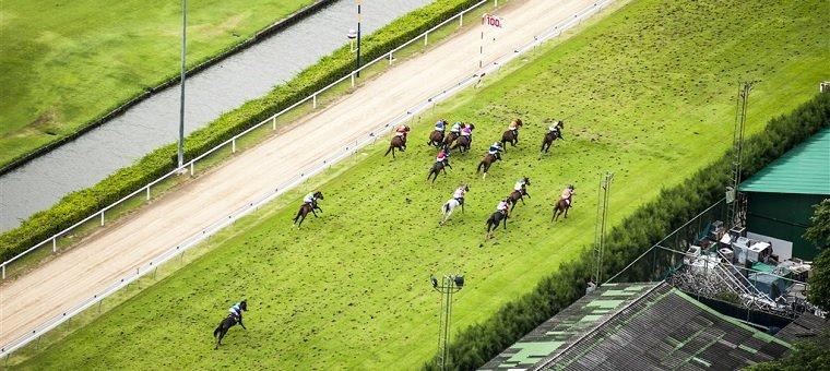 Birds eye view horse race