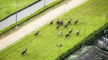 Birds eye view horse race
