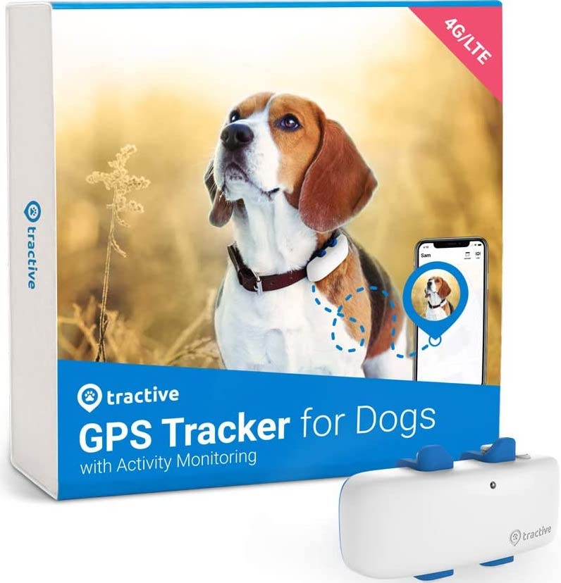 Tractive For Dogs Render Cropped