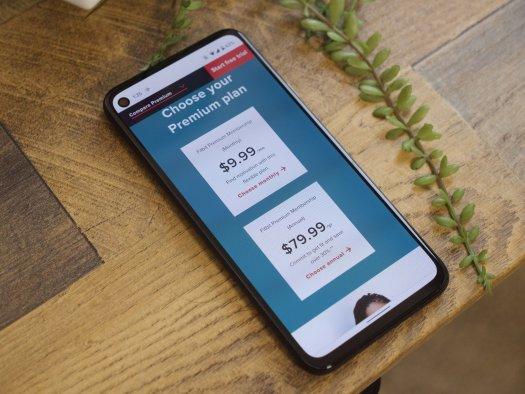 Fitbit Premium prices