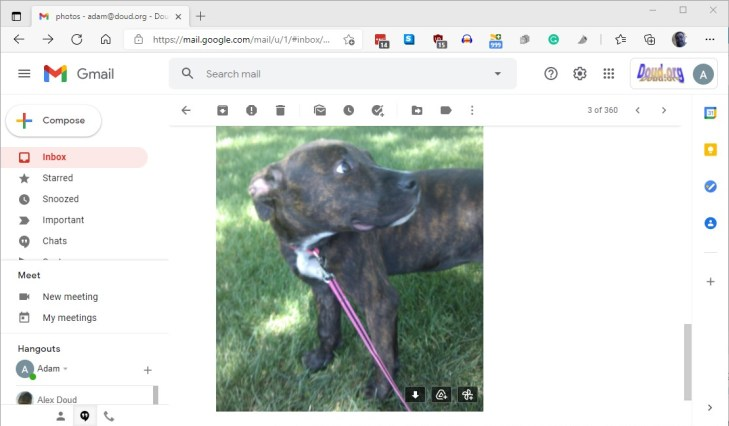 Copy From Gmail To Photos Ss