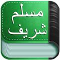 Sahih-Muslim-UrduArabicEng-apk