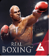 Real Boxing – Fighting Game APK Download v2.4.2 Latest version 1