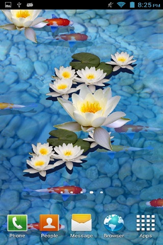 3d fish pond live wallpaper.2