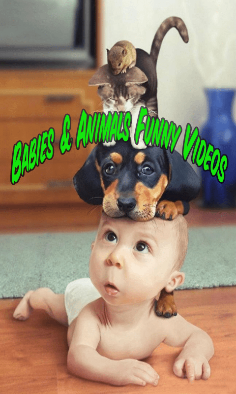 Image of: Whatsapp Babies Animals Funny Videos Screenshot 2 Download Babies Animals Funny Videos App Android Freeware Babies Animals Funny Videos App Download