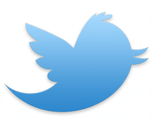 Twitter-Logo-Featured-300x300