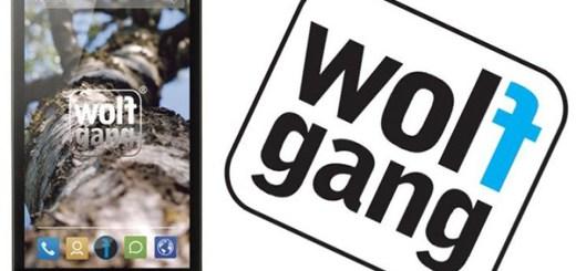 Wolfgang AT-AS45Q