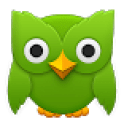 duolingo_icon