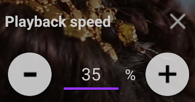 Option to Change Playback Speed