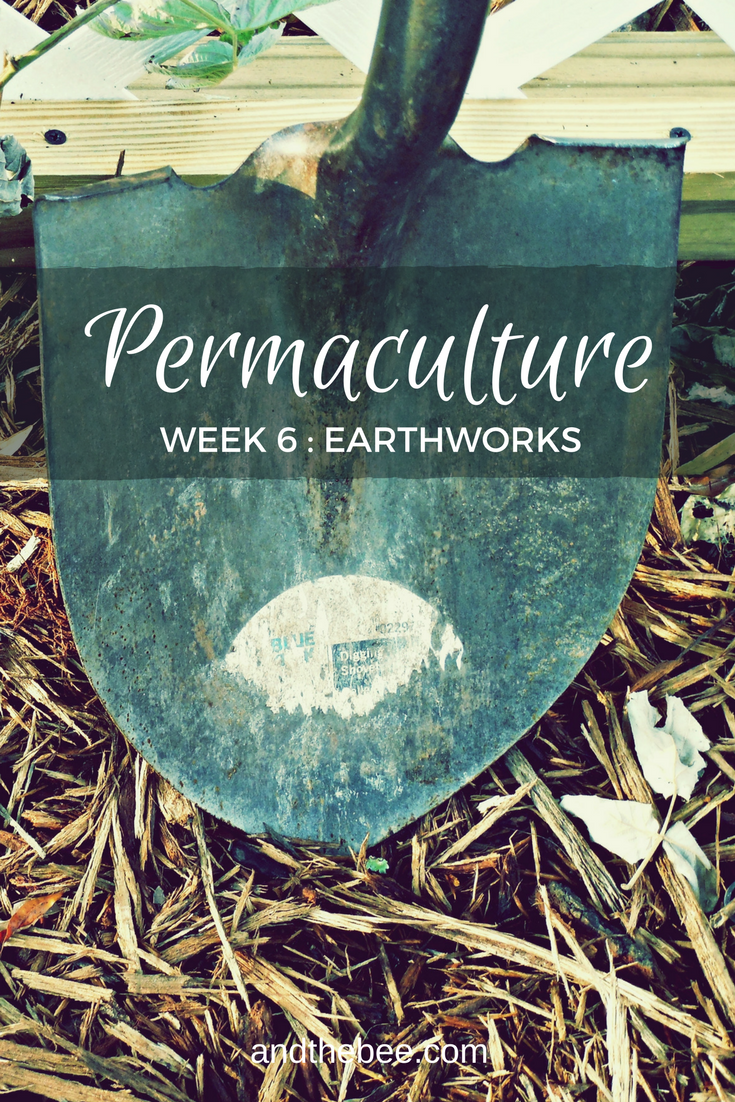 Permaculture Earthworks, week 6 of the PDC
