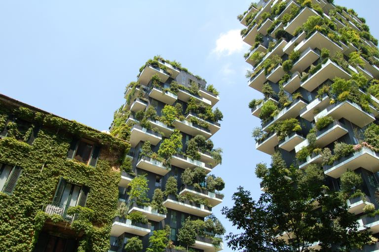 Looking to Transition to a Sustainable Future? :: PraxEco