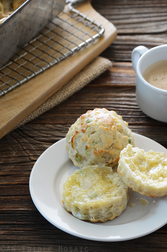 Savory Scallion and Cheese Scones 2