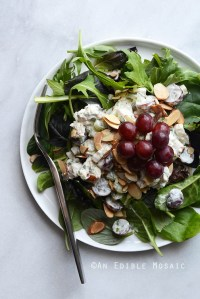 Creamy Rosemary and Red Grape Chicken Salad {Paleo; Whole30-Friendly}