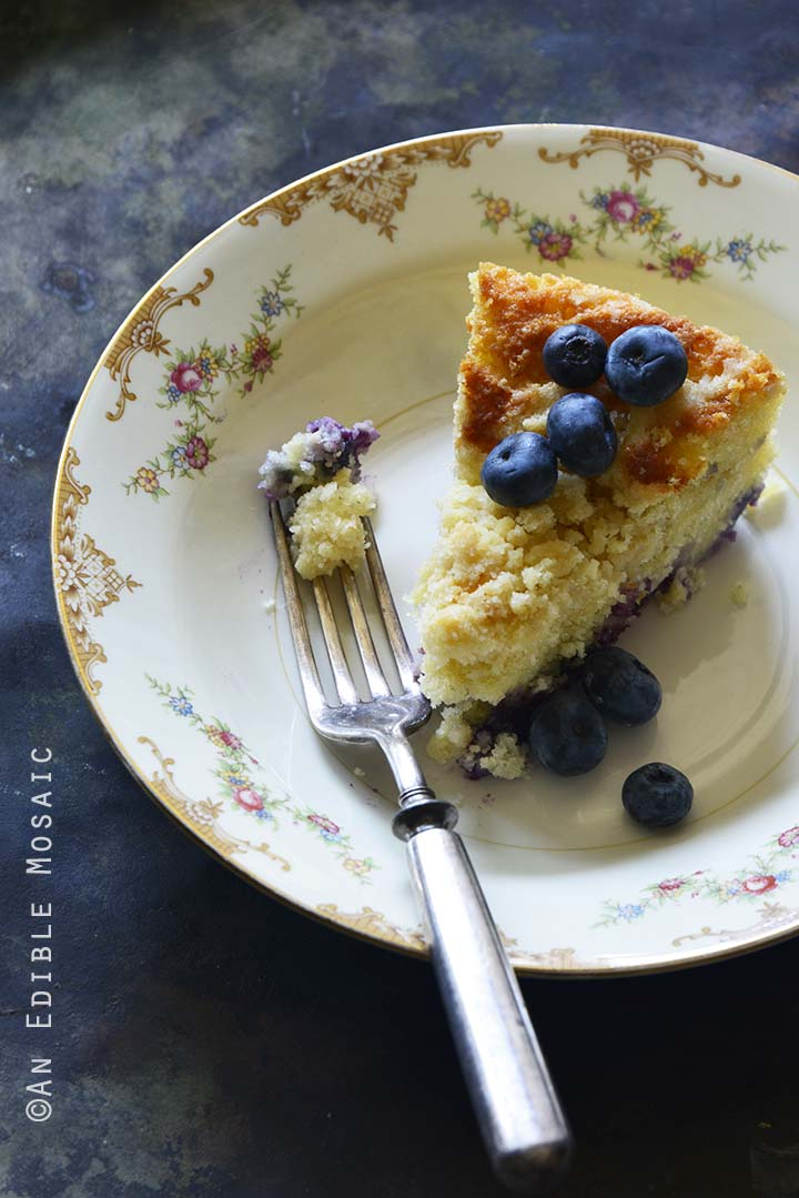 Crumble-Topped Blueberry Buttermilk Coffee Cake Metal Background Front View Vertical Orientation