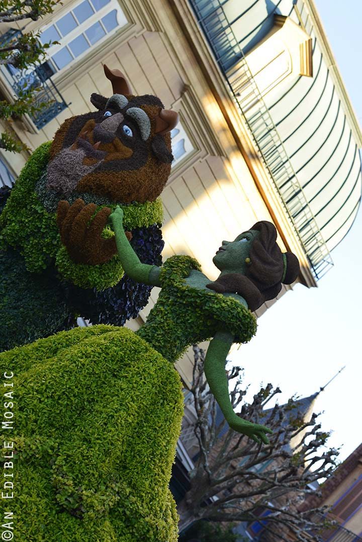 Beauty and the Beast Topiary at Epcot
