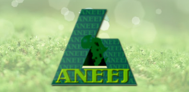 about aneej